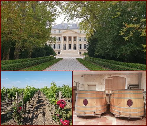Bordeaux Business Travel - Médoc Tour Demi-Journée