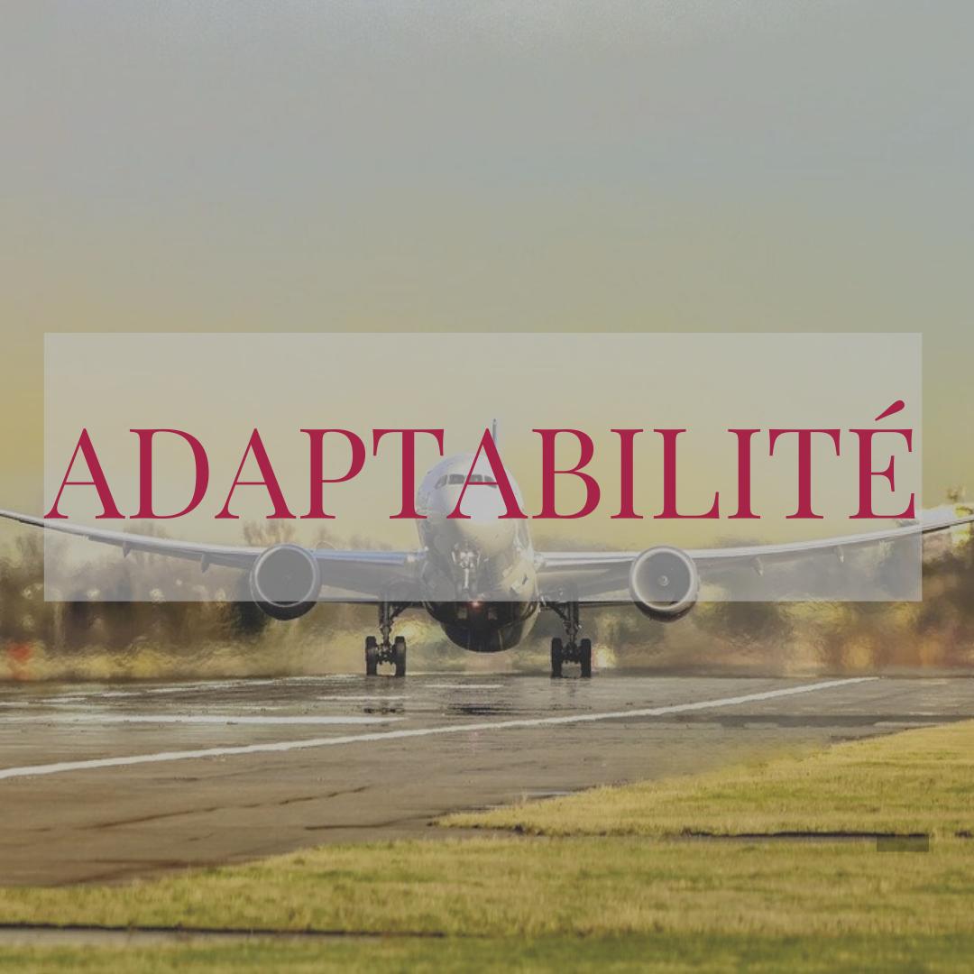 adaptabilite