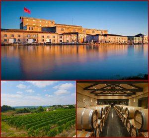 Bordeaux Business Travel - Agence de voyages - Viste & Wine tour Cognac